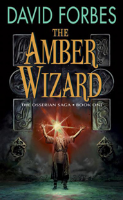 Cover The Amber Wizard oleh David Forbes