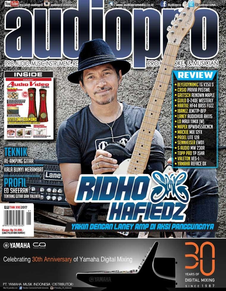 Audiopro Digital Magazine January 2017