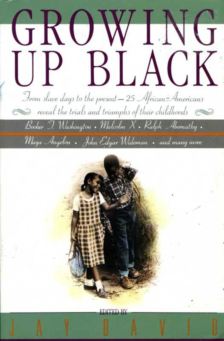 Growing Up Black by Jay David Digital Book