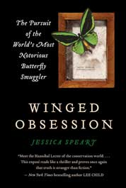 Winged Obsession by Jessica Speart Cover