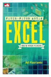 Fitur-Fitur Asyik Excel by Adi Kusrianto Cover