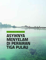 Cover Wisata Bahari Kepulauan Seribu: Asyiknya Menyelam di Perairan Tiga Pulau oleh Choirul Aminuddin et. al.