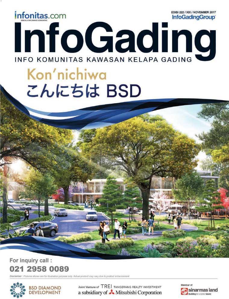 InfoGading Digital Magazine November 2017
