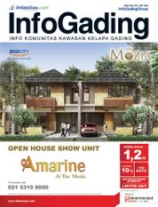InfoGading Magazine Cover May 2016
