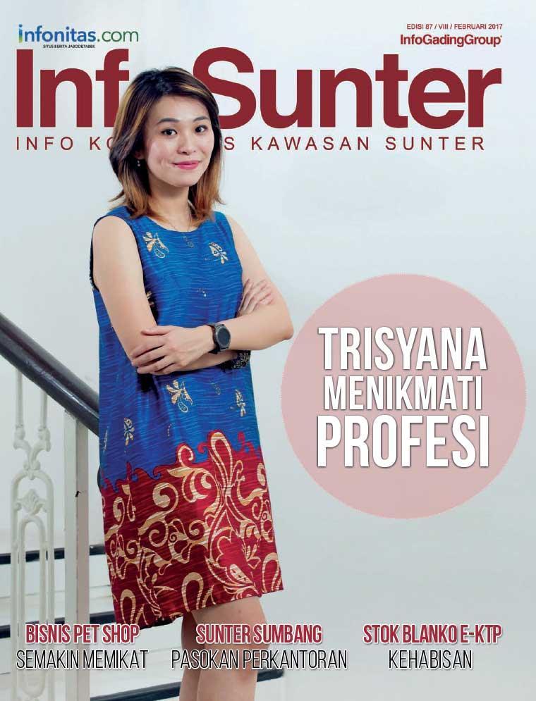 InfoSunter Digital Magazine February 2017