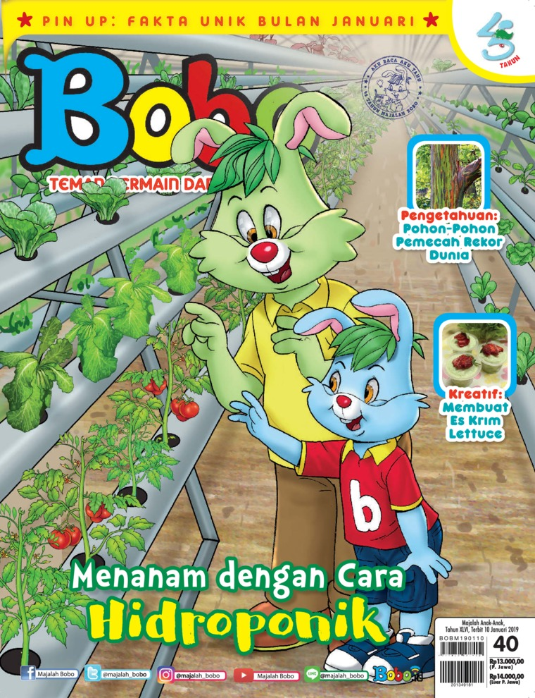 Bobo Digital Magazine ED 40 January 2019