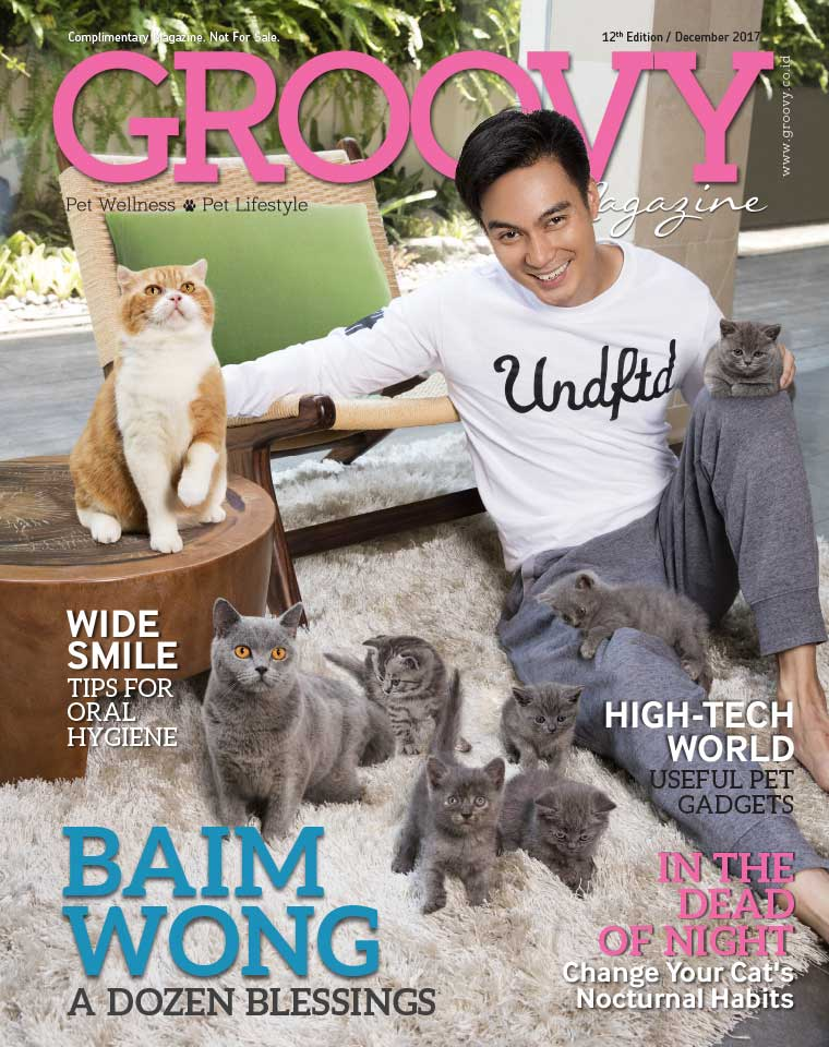 Majalah Digital GROOVY MAGAZINE (Pet Wellness & Pet Lifestyle) ED 12 Desember 2017