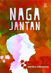 Cover Naga Jantan oleh Soetan Radjo Pamoentjak