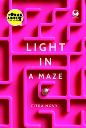 Cover Light in a Maze oleh Citra Novy