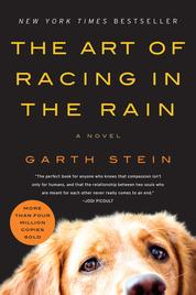The Art of Racing in the Rain by Garth Stein Cover