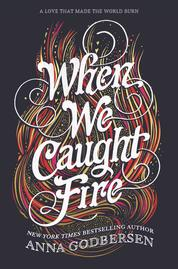 Cover When We Caught Fire oleh Anna Godbersen