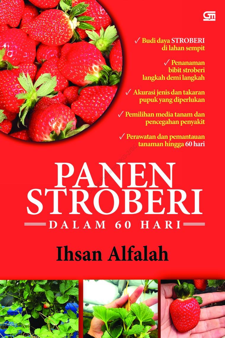 Buku Digital Panen Stroberi dalam 60 Hari oleh Ihsan Alfalah