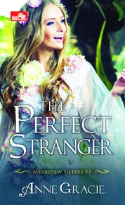 Cover HR: The Perfect Stranger oleh Anne Gracie