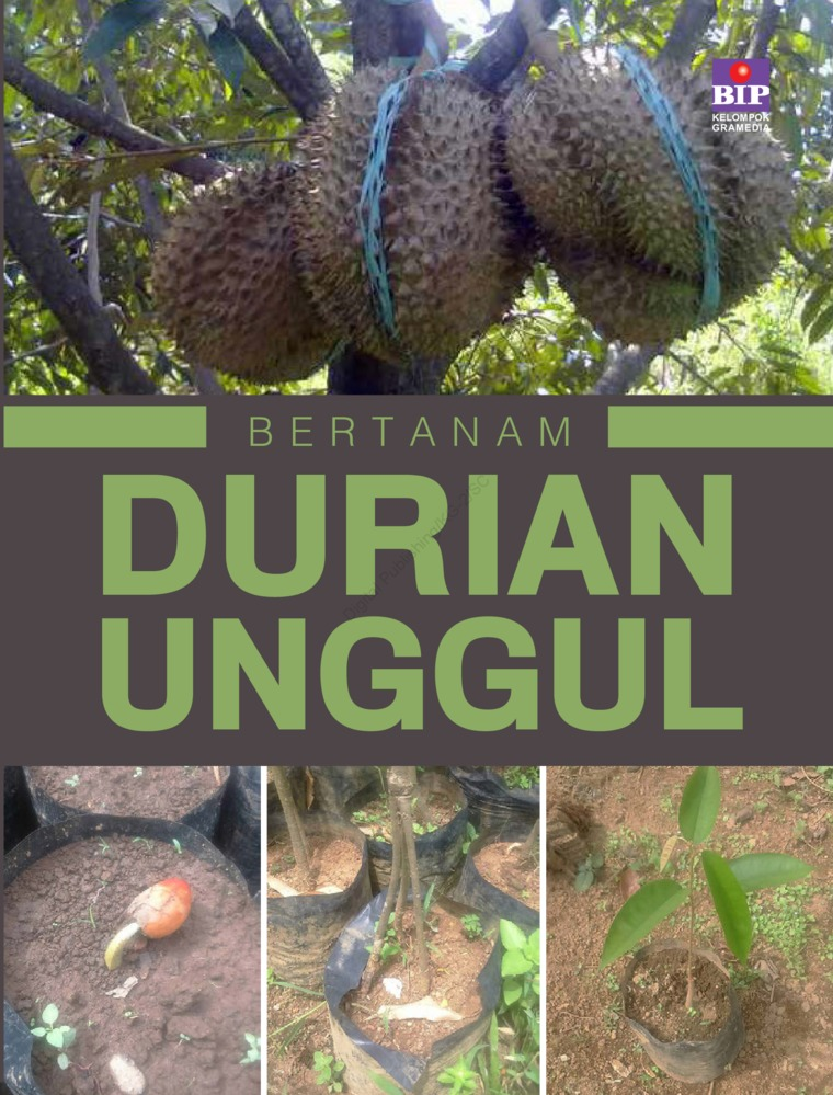 Buku Digital Bertanam Durian Unggul oleh Yusnu Iman Nurhakim