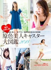 Original Color Full Photobook Of Beautiful Newscasters 2018 cent.FORCE Perfect File [Free Sample] by Bungeishunju Ltd. Cover