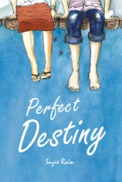 Perfect Destiny by Suzie Rain Cover