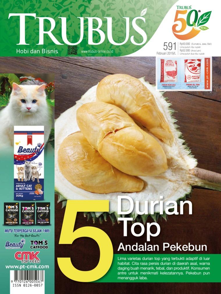 TRUBUS Digital Magazine February 2019